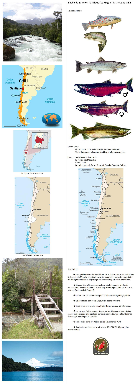 Pêche du Saumon Pacifique (Le King) et la truite au Chili