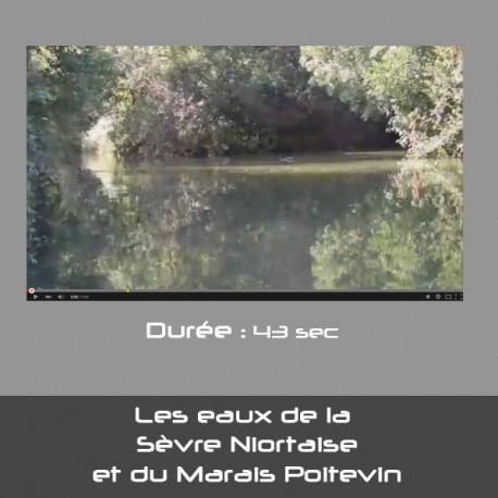 Les eaux de la  Sèvres Niortaise et du Marais Poitevin