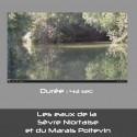Les eaux de la  Sèvre Niortaise et du Marais Poitevin
