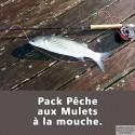 Pack pêche aux Mulets à la mouche