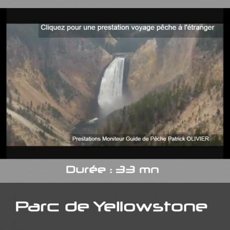 Voyage de pêche dans le parc de Yellowstone