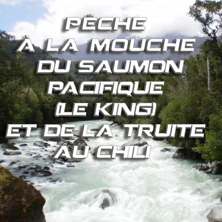 Pêche à la mouche du Saumon Pacifique (Le King) et la Truite au Chili