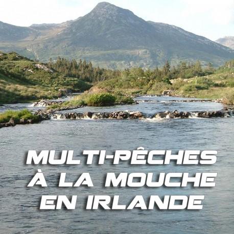Multi-pêches à la mouche en Irlande