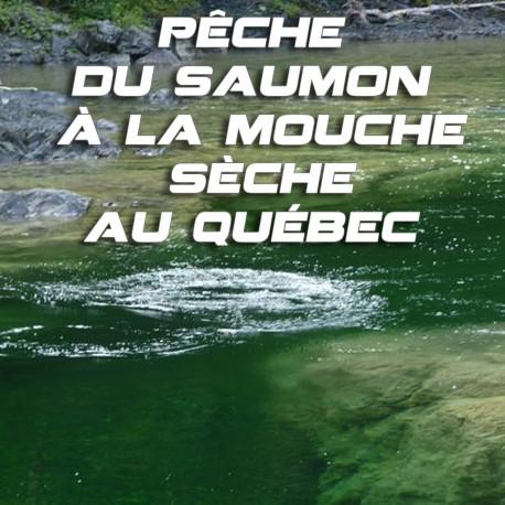 Pêche du saumon à la mouche sèche au Québec