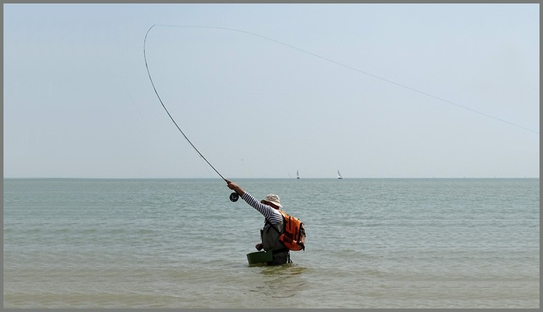 Pêche aux bars au streamer ou au popper